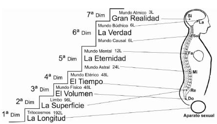 Dimensiones ubicacion