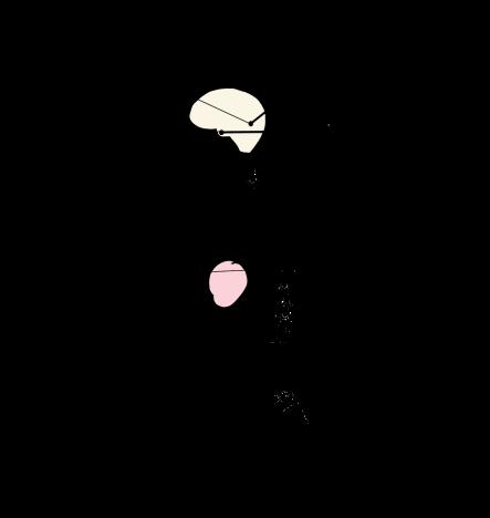 Los siete centros_04