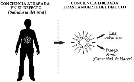 liberacion conc 15