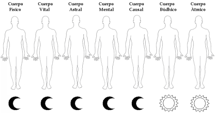 los siete cuerpos 10